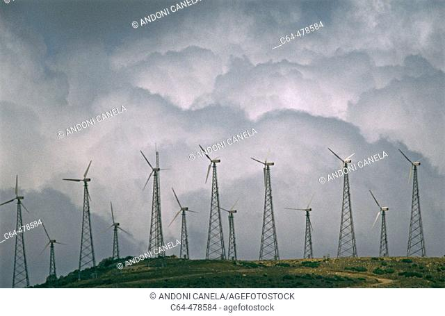 Windfarms. Cádiz province. Andalucia. Spain