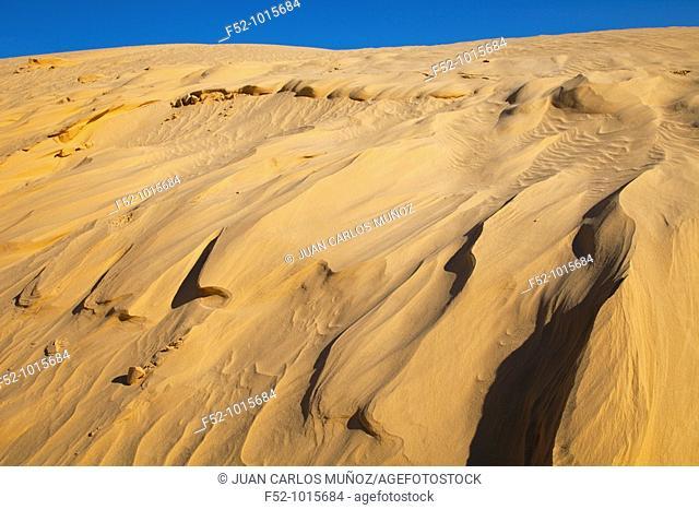 Salt Lake or 'Chott' Ell Yerid. Nefta. Desert of Southern Tunisia. Tunez. Africa