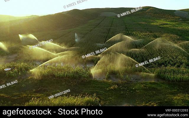 Farmland with watering. Navarre, Spain, Europe. Aerial view. 4K