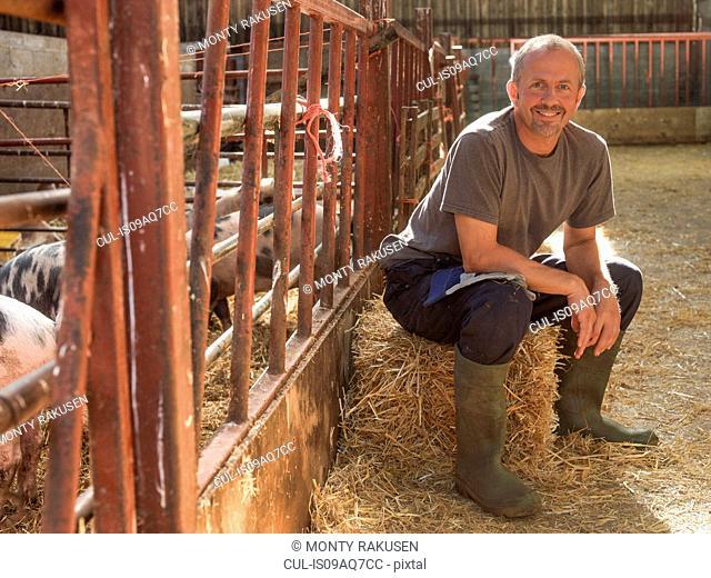 Farmer taking a break in barn with pigs, portrait
