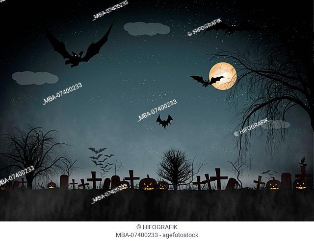Halloween, bat, illustration
