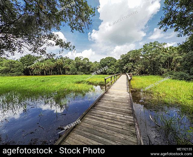 Braodwalk across wetlands in The William S Boylston Nature Trail in Myakka River State Park in Sarasota Florida in the United States