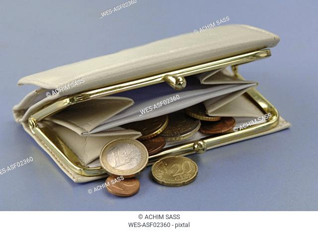 Purse containing change