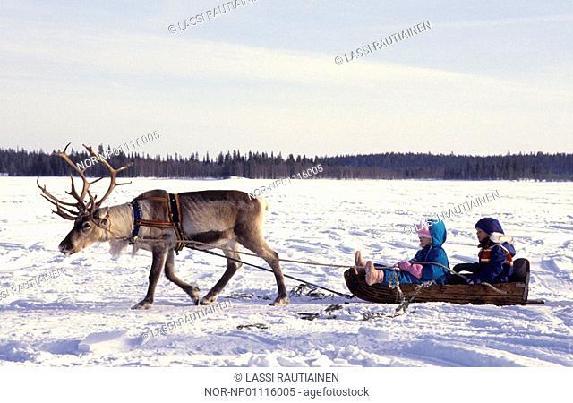Children riding on the reindeer sleigh