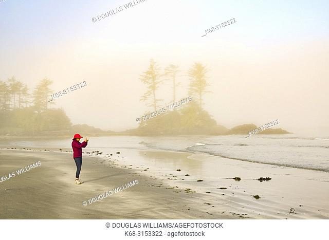 photography, fog, photographer, woman