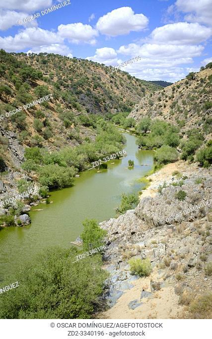 Salor river. Tajo International Park. Extremadura. Spain