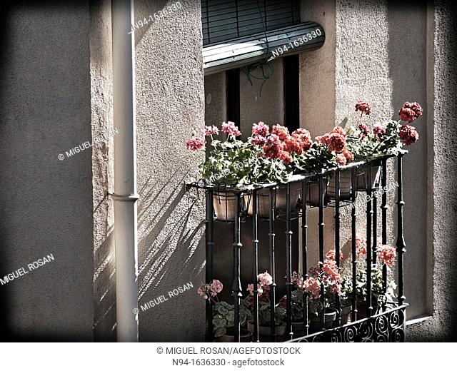 Balcony adorned with beautiful flowers in the front of a house