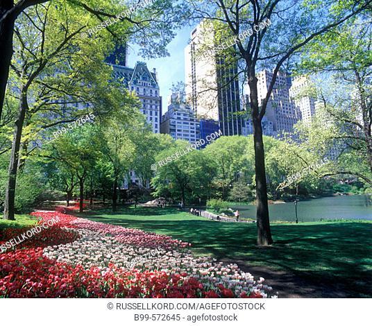 Pond, Central Park, Manhattan, New York, USA