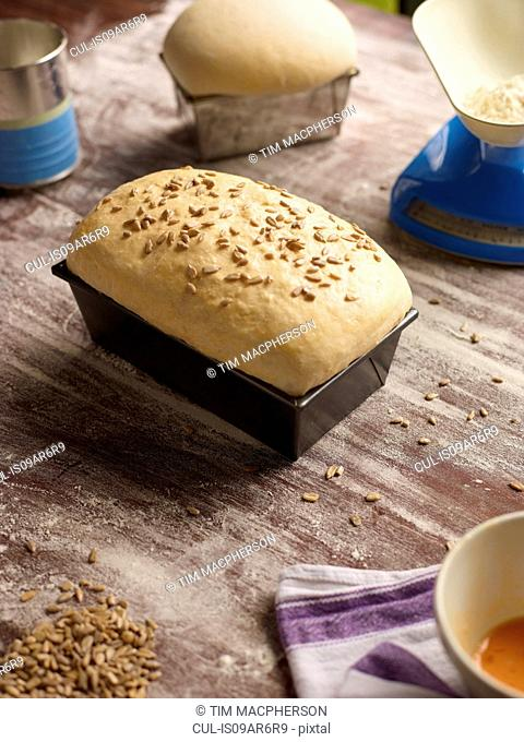 Freshly baked bread in loaf tin on table