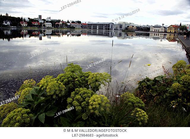 The Reykjavik Pond, Menningarnott, Iceland