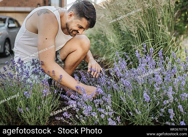 Man gardening in his front lawn