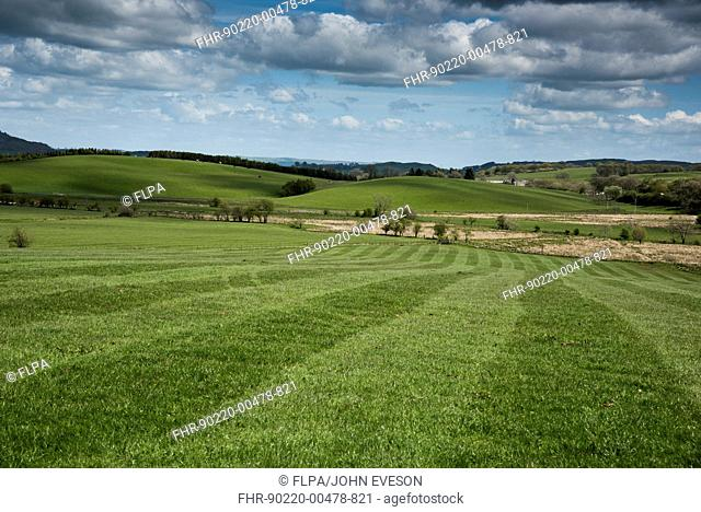 View of farmland with rolled grass field, Dumfries, Dumfries and Galloway, Scotland, May