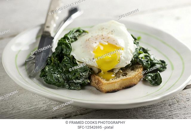Eggs florentine with spinach