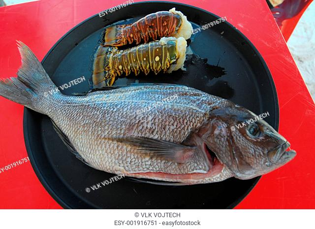 Picture of a fish on black plate