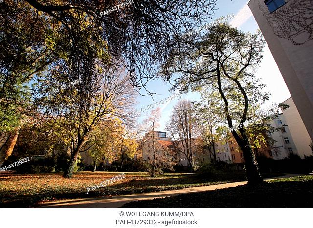 The autumn sun shines onto the cemetery of the Jewish community at the Grosse Hamburger Strasse in Berlin, Germany, 31 October 2013