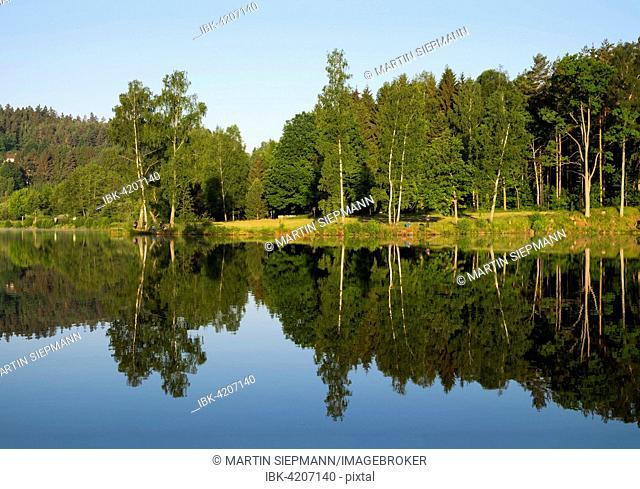 Herrensee in Litschau, Waldviertel, Lower Austria, Austria
