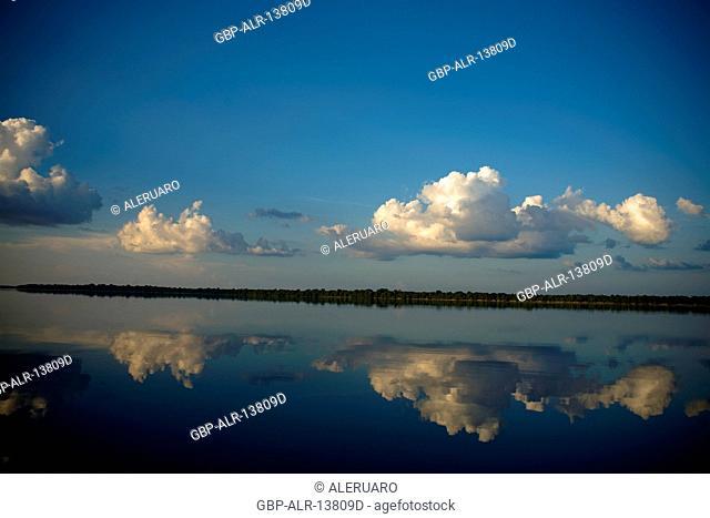 Landscape, Nature, Negro River, Novo Airão, Amazonas, Brazil