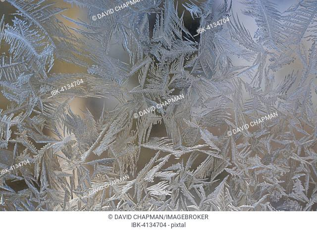 Ice and frost on a window, Eastern Townships, Waterloo, Quebec, Canada