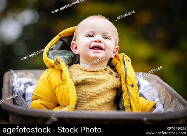 Baby boy portrait in autumn leaves and wheelbarrow