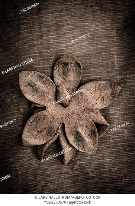 Still life of old rusty metal flower