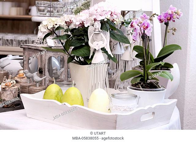 Springlike arrangement in the flower shop. eastern decoration in the foreground, in the background pink blossoming orchids