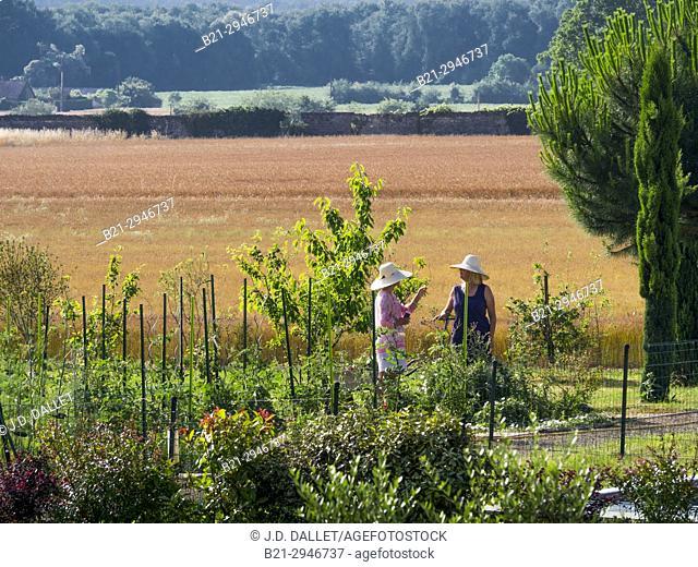 Gardeners in rural environment. France