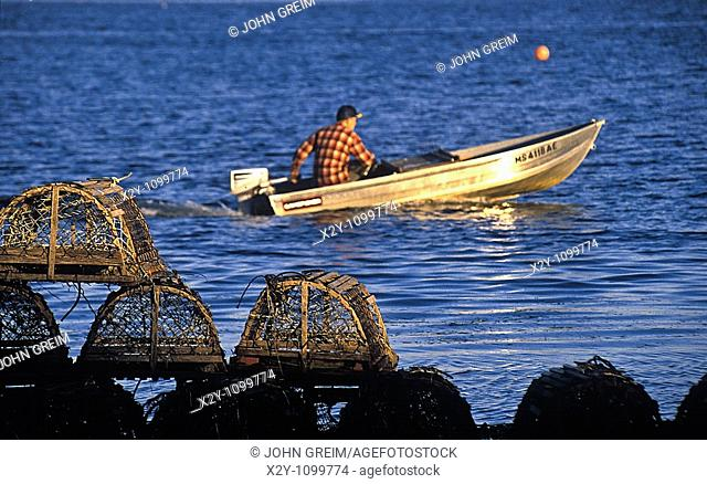 Lobsterman going out to his boat, Cape Cod, MA