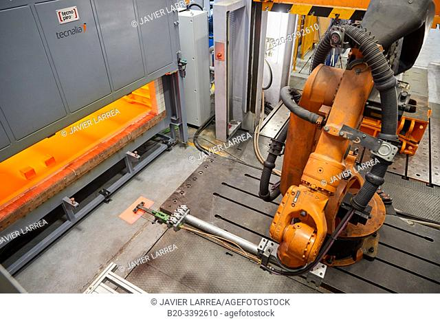 Robot that introduces materials in the oven and later takes them to the press, Hot stamping cell, Industry Unit, Automotive Industry, Technology Centre