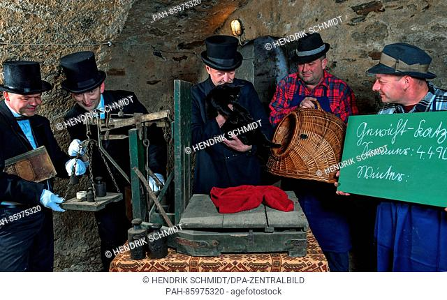 The weighing commission with Jens Kopra (l-r), Jonny May, Jens Lommatzsch and farm hands Jens Nebel and Ronny Froebel puts the male cat Nero on the historical...