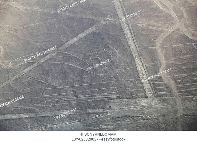 Aerial view of Nazca Lines - Parrot geoglyph, Peru. The Lines were designated as a UNESCO World Heritage Site in 1994