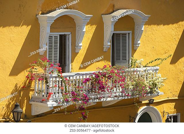 Balcony of a colonial building covered with flowers at the historic center, Cartagena de Indias, Bolivar, Colombia, South America