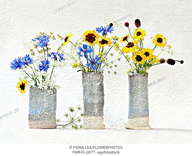 Studio shot of Cornflower, Centaurea cyanus Cow parsley, Anthriscus sylvestris Cow parsley, Anthriscus sylvestris arranged in glazed pots Artistic textured...