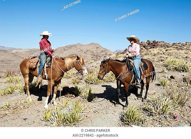 Usa, Two Men Horseback Riding Among Desert Landscape; Texas