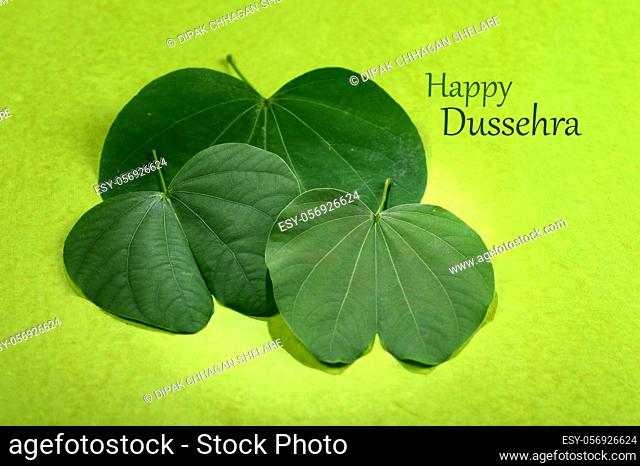 Indian Festival Dussehra, showing golden leaf and flowers on green background. Greeting card