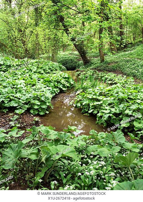 Mackintosh Park Knaresborough North Yorkshire England