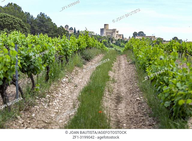 Village view and vineyards in penedes wine area, Castellet i la Gornal, Catalonia. Spain