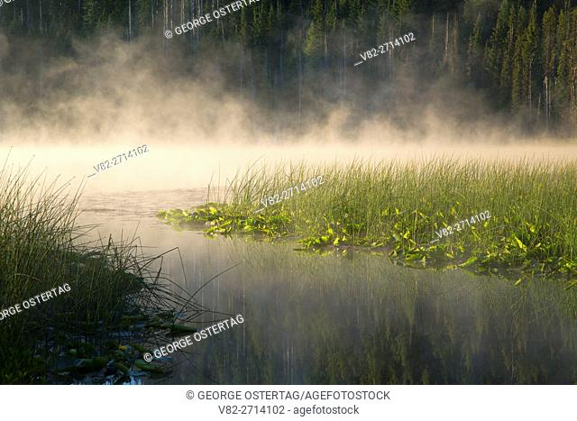 Mist on Hosmer Lake, Cascade Lakes National Scenic Byway, Deschutes National Forest, Oregon