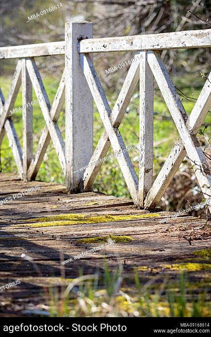 Europe, Denmark, Møn, Old wooden bridge on the grounds of Marienborg Castle
