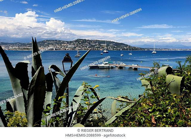 France, Alpes Maritimes, Lerins Islands, Sainte Marguerite island port pontoon, coastal and Cannes view