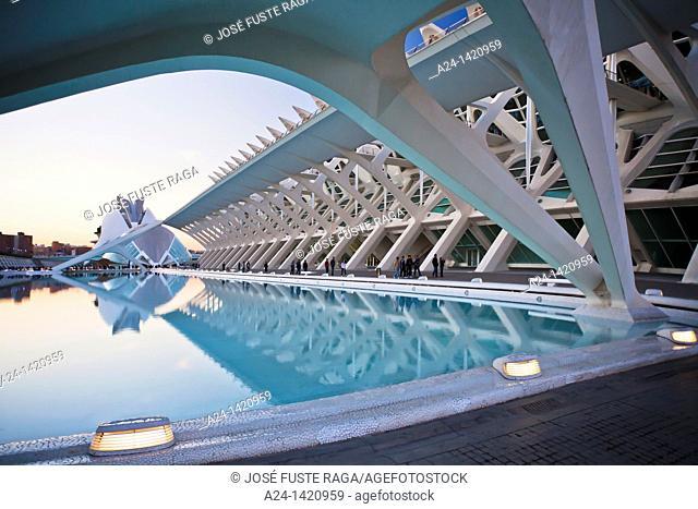 Spain-Valencia Comunity-Valencia City-The City of Arts and Science built by Calatrava-