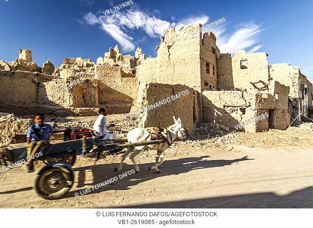 Children on a donkey pulled cart inside Shali fort. Siwa Oasis, Egypt