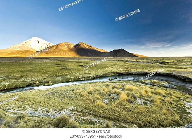 sunset at altitude 4400m above snow-covered volcano Sajama in Bolivia with bushes of grass and river flowing
