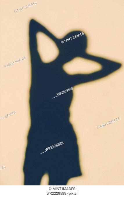 The outline of a human body, a shadow against a plain background, a female shape