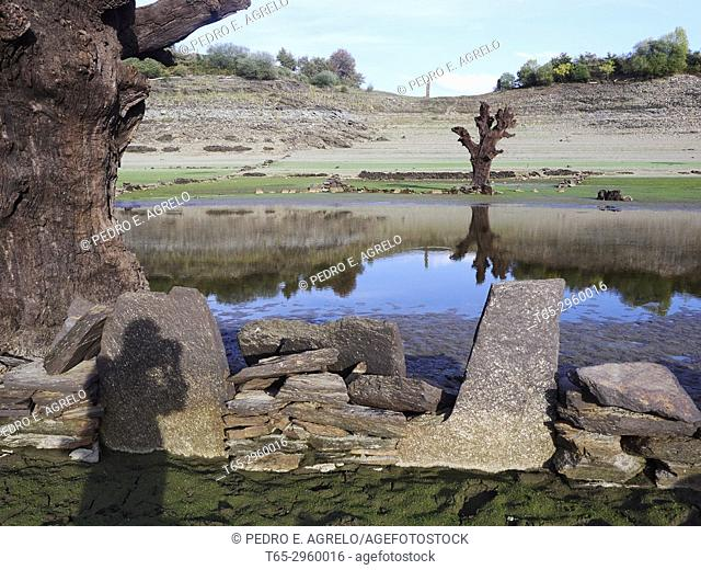 Drought in the Portomarin reservoir, Lugo Dry trees and stones and reflection in the water and shadow of the photographer. Galicia, Spain
