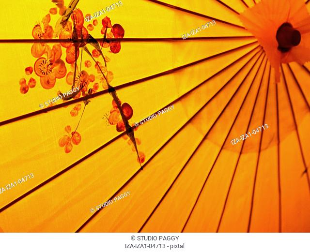 Close-up of a parasol