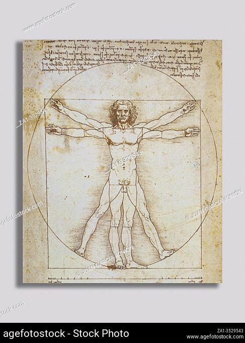 Leonardo da Vinci Vitruvian Man. Gallerie dellAccademia of Venice, Italy. Old paper background