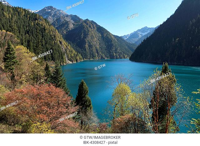 Long Lake, Jiuzhaigou National Park, Sichuan Province, China