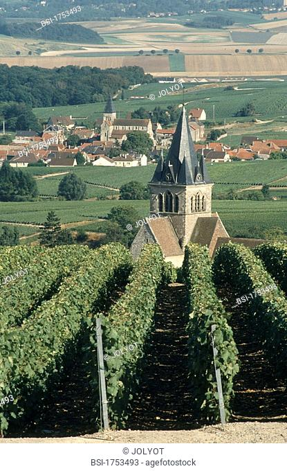 CHAMPAGNE REGION, REIMS, FRANCE