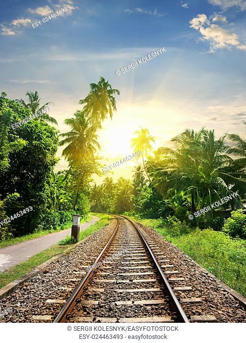 Sundown over railroad in jungle of Sri Lanka