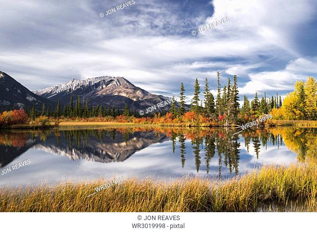 Autumn foliage and mountain lake, Jasper National Park, UNESCO World Heritage Site, Canadian Rockies, Alberta, Canada, North America